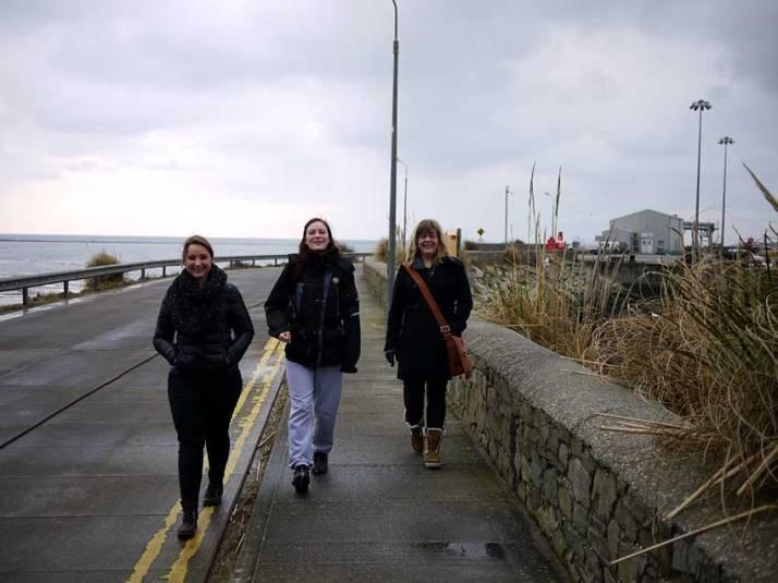 Tre hundfrisörer på Irland